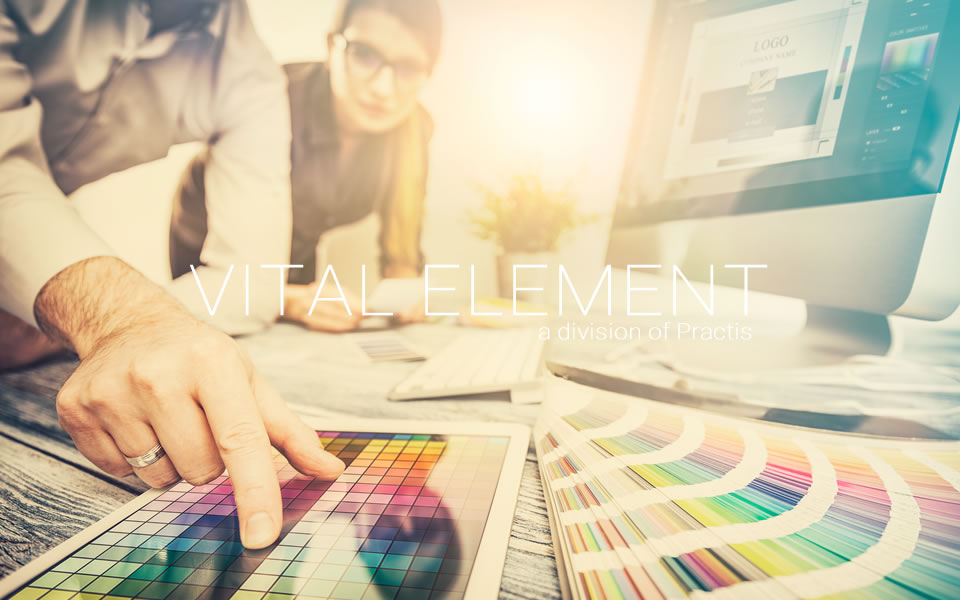 Vital Element, Inc. is a Creative Digital Web Marketing and Technology Agency serving the healthcare industry